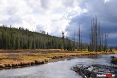 Yellowstone-01